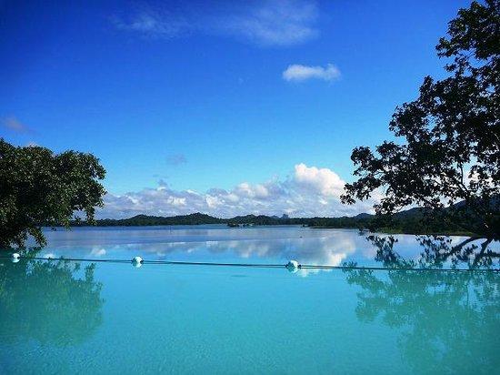 Heritance Kandalama: ♪ 大自然の中でのひと泳ぎ ♪