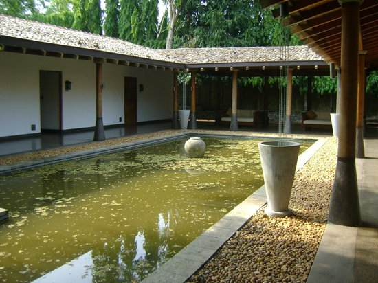 The Wallawwa: Pond outside room