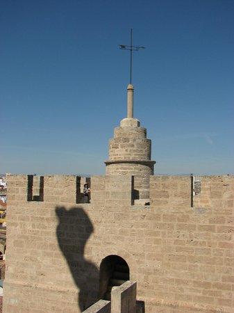 Torres de Serranos: Тень флага