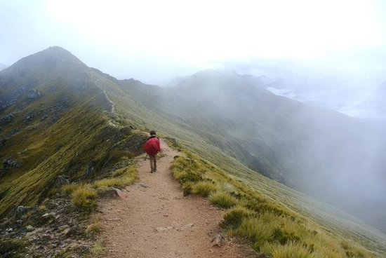 Kepler Track: Alpine sections of track - disappearing into the mist