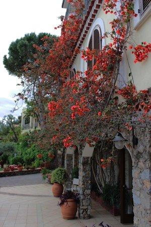 Hotel Club San Diego : Struttura Hotel