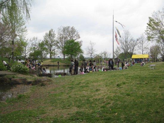 Hirosuke Hamada Memorial Museum : Museum park area with fishing pond