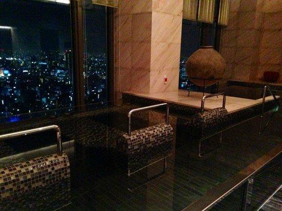 Mandarin Oriental, Tokyo: idro view