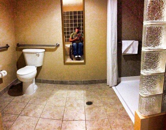Comfort Suites Univ. of Phoenix Stadium Area: The toilet and roll-in shower
