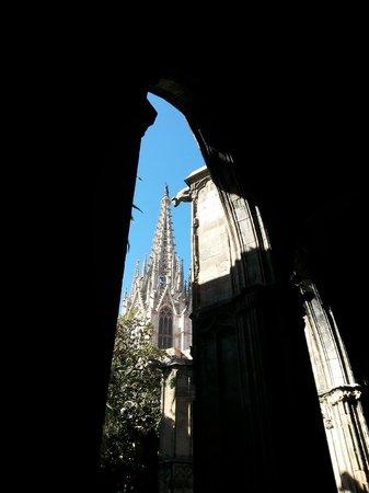 Catedral de Barcelona: Chiostro