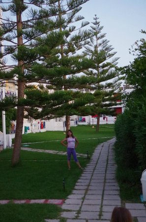 Summer Dream Hotel : il giardino dell'hotel
