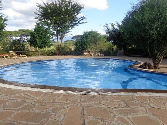 Kibo Safari Camp: pool area