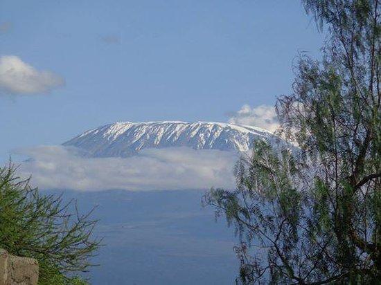 Kibo Safari Camp: view of kili