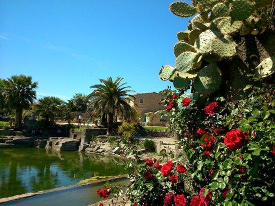 Vue sur la maison picture of le jardin de saint adrien for B b la maison st hubert