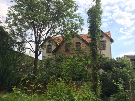 Hungaria Guesthouse : The view from the front side