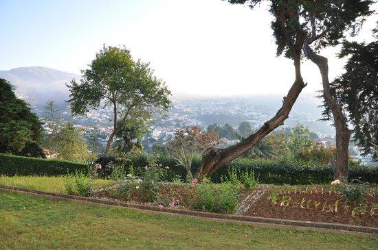 Quinta Das Vistas Palace Gardens : Vue de la chambre 109 le matin