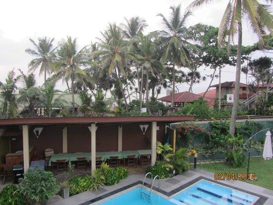 Ranveli Beach Resort: Вид из отеля. За пальмами океан