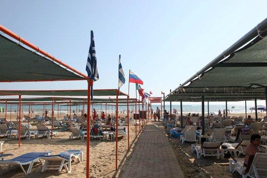 Narcia Resort Hotel: вид на пляж закрепленный за отелем