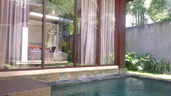 Umae Villa: Dipping pool