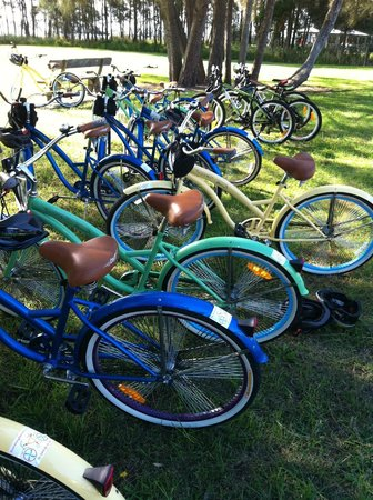 Hire a bike for the day and explore Newcastle - Picture of ...