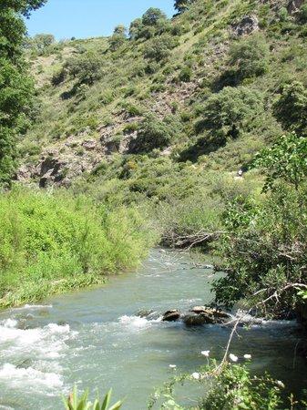 Cabanas Jimera de Libar: Vistas del rio Guadiaro