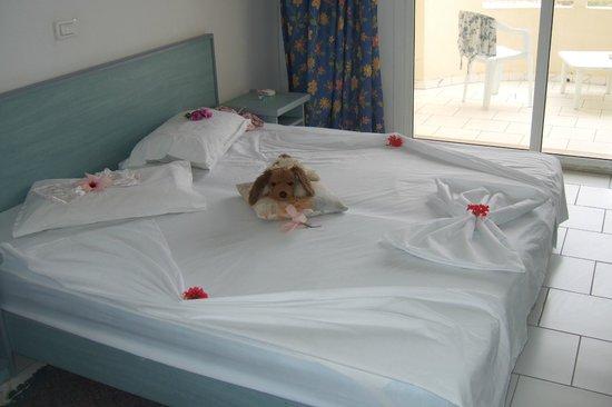 Hotel Safa : room