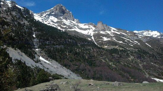 Valle de Pineta: Pineta