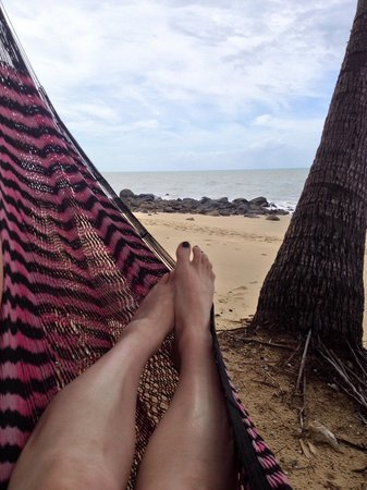 Turtle Cove Beach Resort: Love the hammocks!