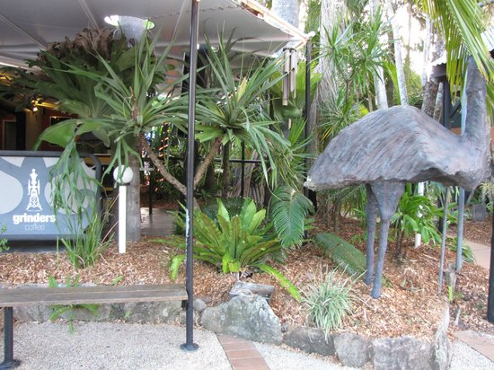 Noosa Backpackers Resort: The Emu outside Global Cafe and the Hostel