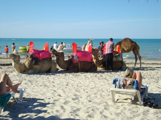 Djerba Holiday Beach : La plage