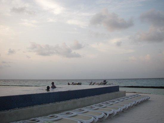 Kuramathi Island Resort : Infinity pool