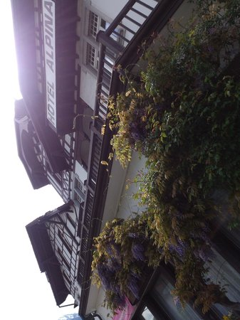 Alpina Hotel : Interlaken - Hotel Alpina - Strassenfassade