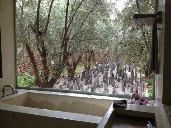 Dar Sabra Hotel Marrakech: Jardin