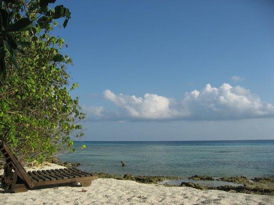 Makunudu Island : 部屋を海側に出るとプライベートビーチがあります。
