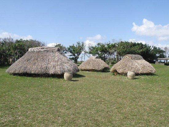 Nakabaru Site: 竪穴式住居