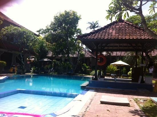 Hotel Sinar Bali: pool and bar