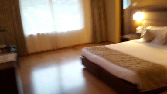 The Hawaii Comforts: Huge room no 208