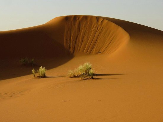 Guest House Merzouga : Dune dell'Erg Chebbi distanti 500 metri