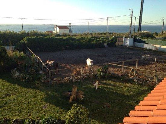 Quinta Beira-Mar: Balcony :)