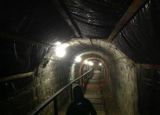 Hunguest Hotel Pelion: Вход в пещеру