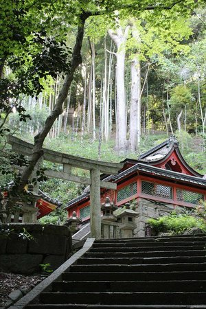 Iwashimizu Hachimangu: 石清水井・石清水社