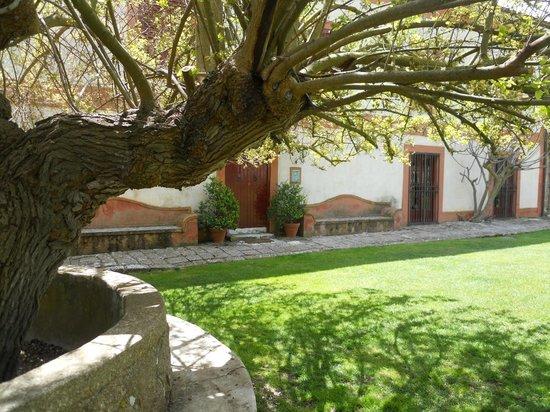 Masseria Rossella: Corte centrale e gelso