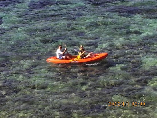 Royal Davui Island Resort, Fiji : Activities