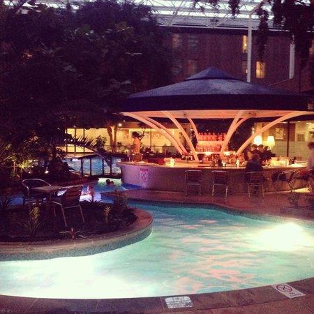 Sheraton Skyline Hotel London Heathrow : Pool area, great atmosphere