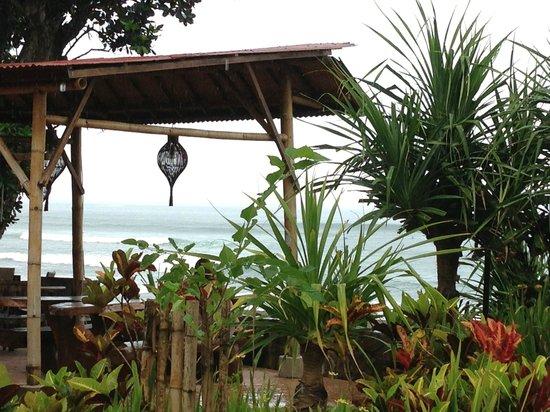 Pondok Pitaya: Hotel, Surfing and Yoga : restaurant