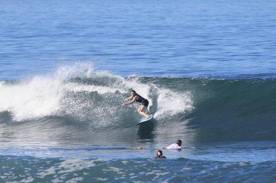 Pondok Pitaya: Hotel, Surfing and Yoga: surfing