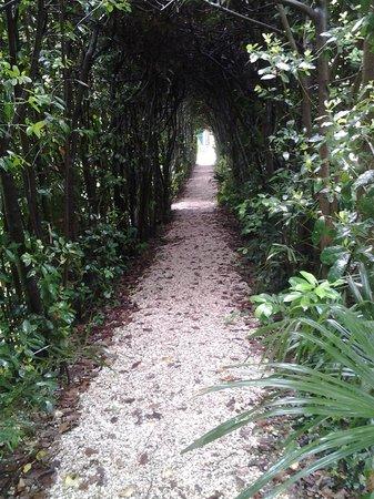 Borgo Storico Seghetti Panichi : particolare del giardino