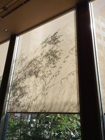 Hotel Niwa Tokyo : Beautiful shiloutette of the plants on the lobby