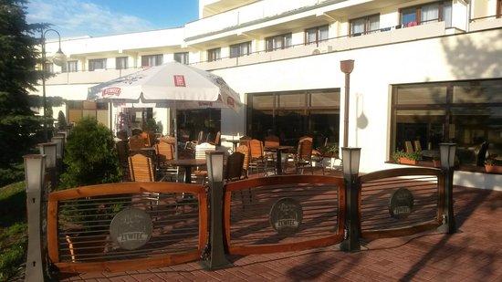 Hotel Wodnik: Ogódek przed Hotelem...
