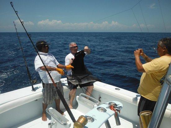 JP Sport Fishing Tours: Sail Fish