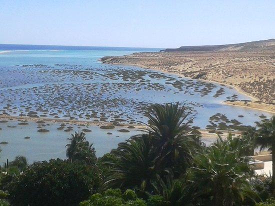 Melia Gorriones Fuerteventura: Lagoon
