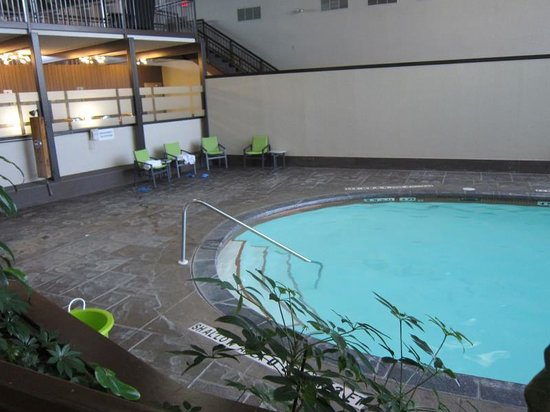 Holiday Inn Guelph Hotel & Conference Centre : Small pool
