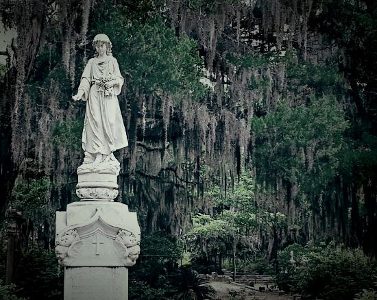 Bonaventure Cemetery : Great photo ops in Bonaventure.
