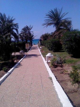 Palm Beach Club Hammamet: le jardin