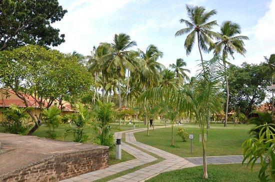 Club Palm Bay Hotel: الغرف الغير مطلة على البحيرة